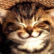Sorria para as pessoas